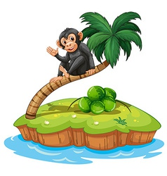 A monkey above coconut tree vector