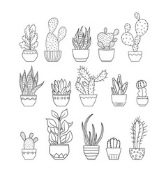 Cactus succulent flowers isolated set collection vector