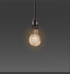 ceiling lamp light bulb with bright warm light vector image
