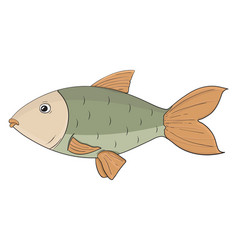 Fish colored hand drawn sketch vector