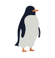 penguins isolated aquatic flightless bird vector image