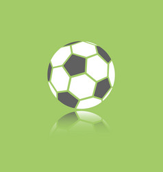 Soccer ball icon with reflection on green vector