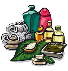 natural spa products vector image vector image