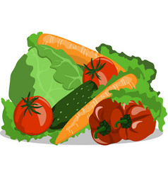image vegetables still life cucumber tomato vector image vector image