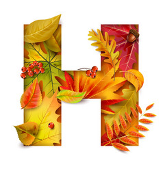 autumn stylized alphabet with foliage letter h vector image