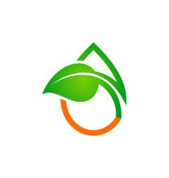 droplet green leaf organic logo vector image