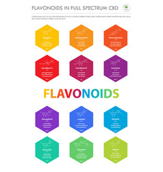 flavonoids in full spectrum cbd with structural vector image