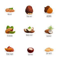 Fresh nuts icon set cartoon style vector