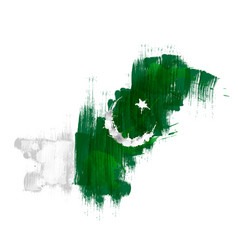 grunge map pakistan with pakistanian flag vector image
