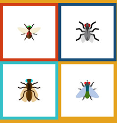 Icon flat fly set of mosquito buzz dung and vector