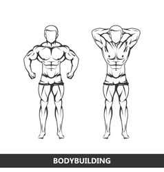 muscled man body vector image