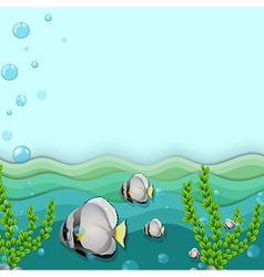 A school of fishes underwater vector image