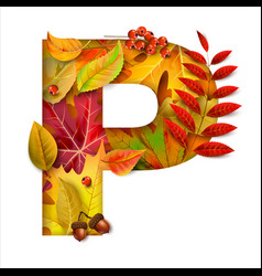 autumn stylized alphabet with foliage letter p vector image