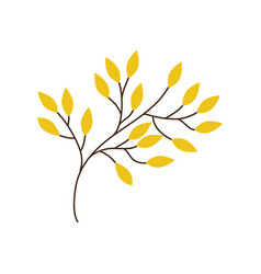 Branch yellow leaves image vector