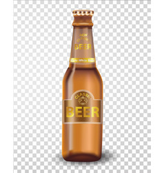 premium beer bottle isolated on transparent vector image
