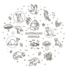 set linear australian animals vector image