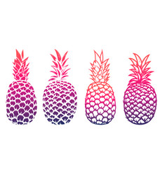 Set of pineapple isolated on white background vector