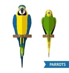 Sitting Parrots Set vector image