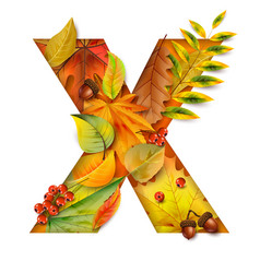 autumn stylized alphabet with foliage letter x vector image