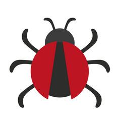 beetle bug icon image vector image