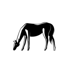 black and white horse standing sideways with its vector image