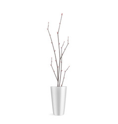 branches in pot composition vector image