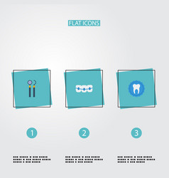 flat icons dentition tooth seal equipment and vector image
