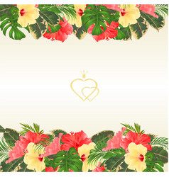Floral border with blooming various hibiscus vector