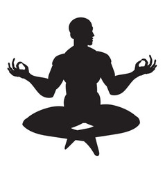 monk in meditation vector image