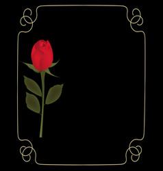 red rose on black background with golden frame vector image