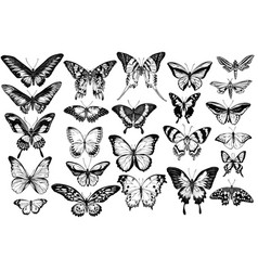 Set hand drawn black and white great vector