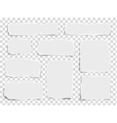 Set paper different fragments scraps isolated vector
