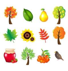 Autumn Set vector image vector image