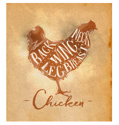 Chicken cutting scheme craft vector