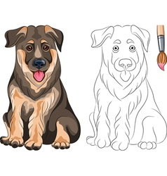 Coloring Book of smiling Puppy Shepherd vector image