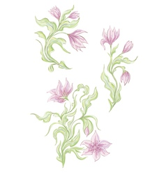 Hand drawn tender spring flowers vector image