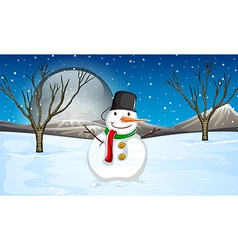 Snowman on the ground at night vector image