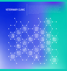 veterinary clinic concept in honeycombs vector image