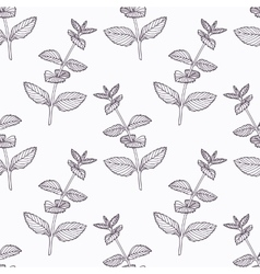 Hand drawn mint branch outline seamless pattern vector image vector image