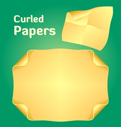 curled papers vector image vector image
