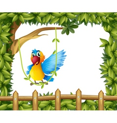 A parrot swinging the vine plant vector image vector image
