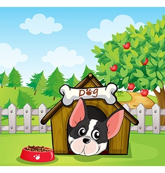 A dog inside a dog house at a backyard with an vector