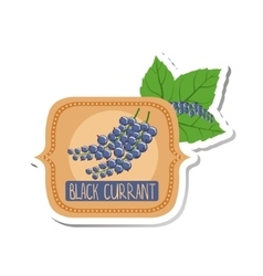 Black Currant Bright Color Jam Label Sticker vector