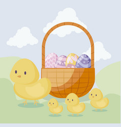 cute chickens with basket and eggs of easter vector image