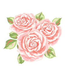 decorative element with pink roses vector image