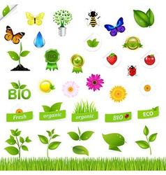 Eco Set With Nature Icons vector image vector image