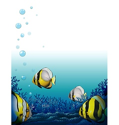 Fishes under sea vector
