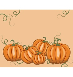 Fresh Pumpkins on pale rose vector image