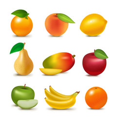 fresh realistic 3d juicy fruits slice organic vector image
