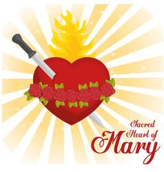 Sacred heart of mary vector